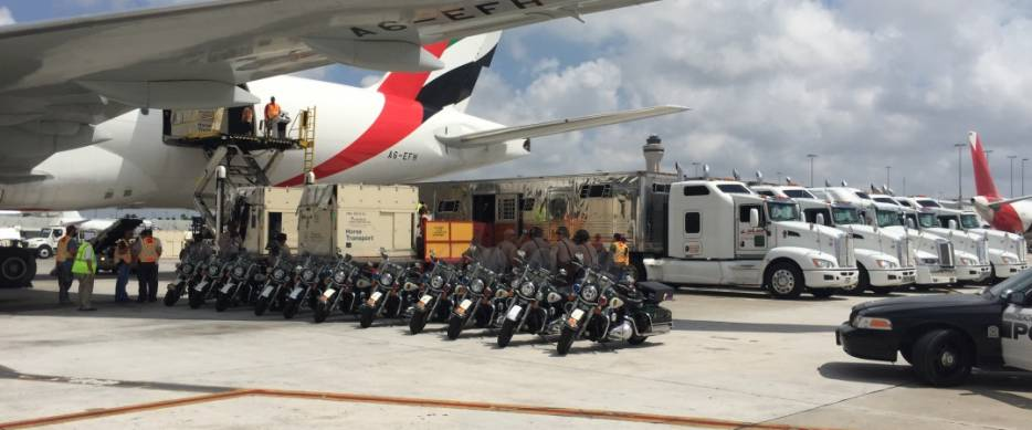 The World's Top Horses Arrive in Style At Miami Beach